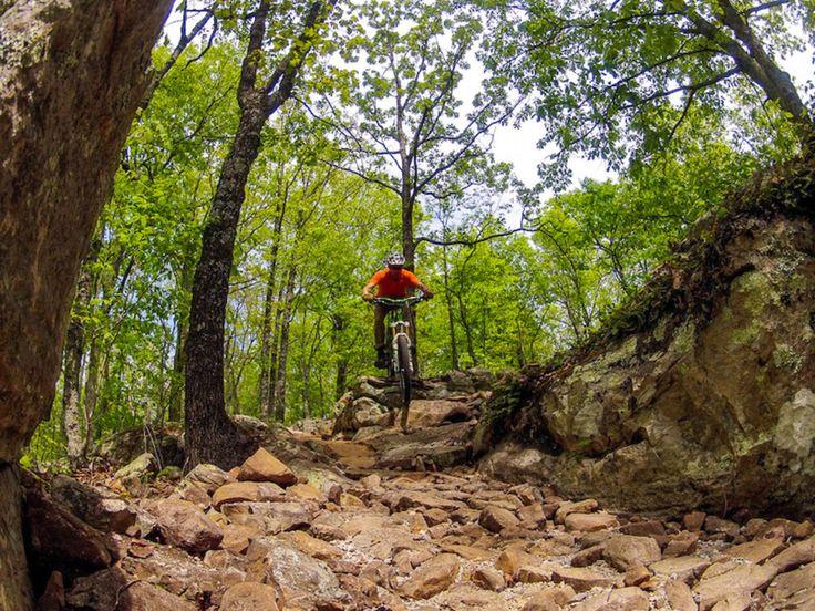 BOMBING Down Hill Mountain Bike Jungle! - VIDEO - http://mountain-bike-review.net/downhill-mountain-bikes/bombing-down-hill-mountain-bike-jungle-video/ #mountainbike #mountain biking