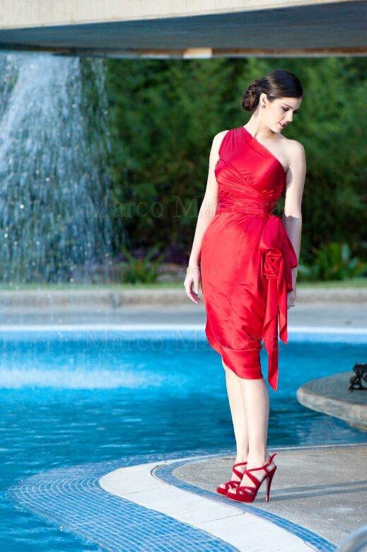 Silvia Tcherassi red dress