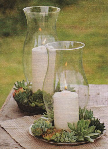 Succulents and Candles add a little antique lace or burlap! (orange candle)