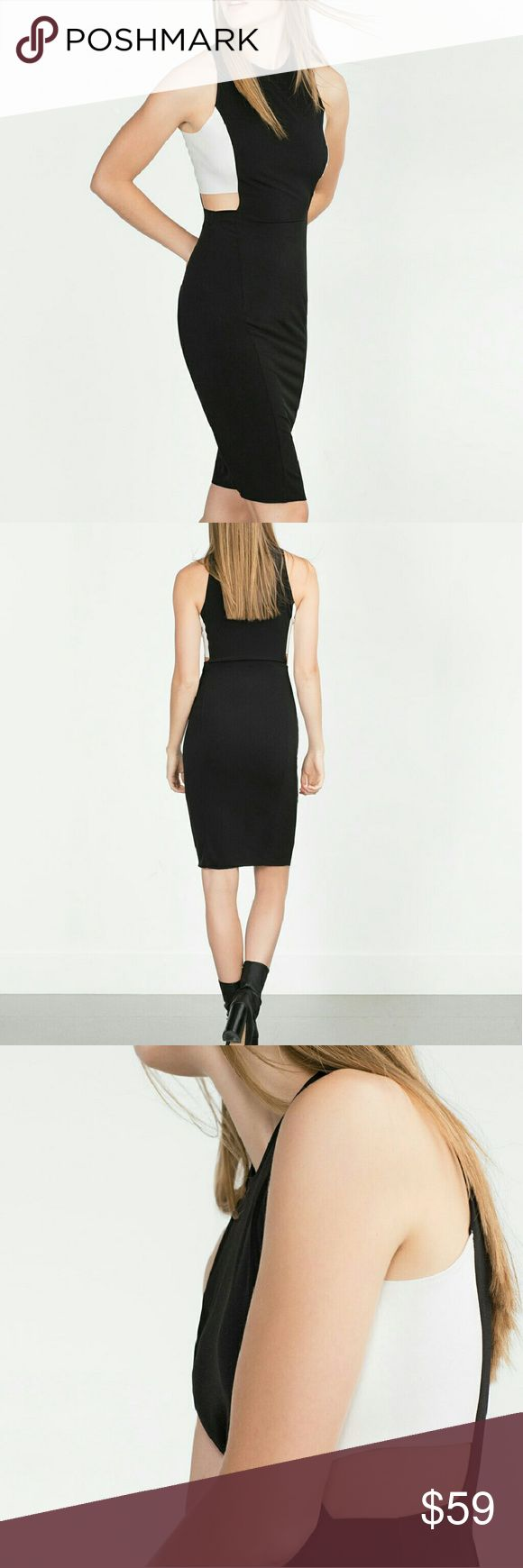 Weekend sale! (Lowest price) Zara dress Super sexy. Side cut out brand new  Reduced from $59 Zara Dresses
