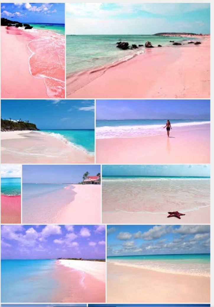 25 best ideas about pink sand beach bahamas on pinterest for Bahamas pink sand beaches