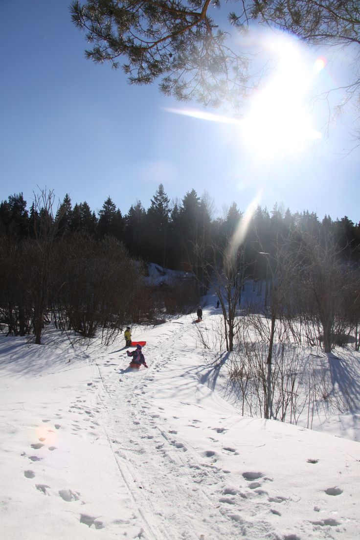 Tabogganing down a steep slope is fun for the whole family. #snowfun #helsinki