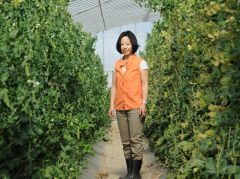 農業は「めげない、あきらめない」ビジネス  (加藤百合子氏の経営者ブログ)