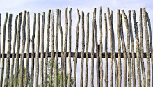 rustic fence made of tree branches