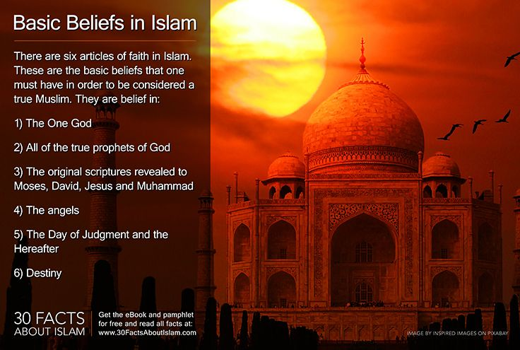 religion of islam informative speech Dialogue is evidence on freedom of religion in islam: the roots of freedom of religion in islam: introduction of : religious freedom between islam and fanatic muslims : freedom of speech in islam by: - ahmed mansour.