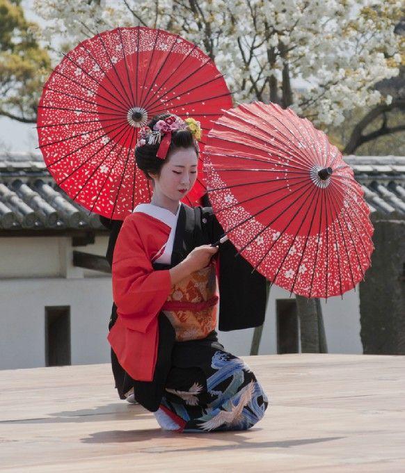 Spring Festival 3