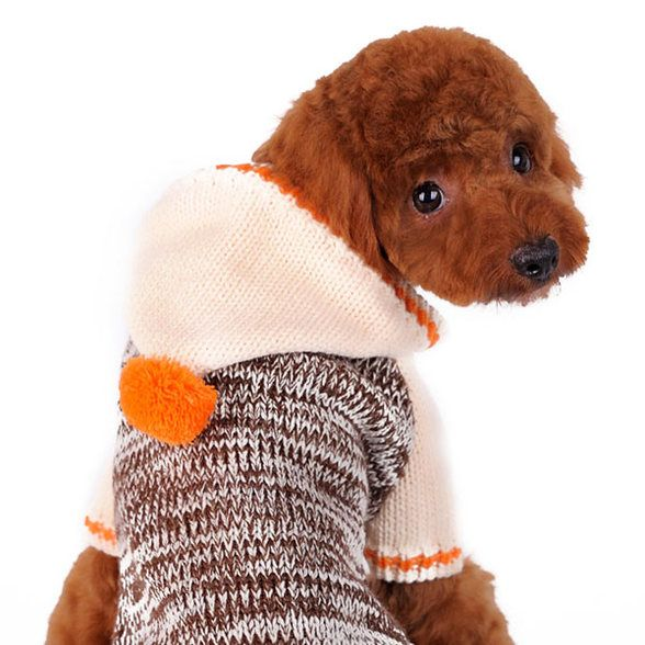 Contrast Hoodie Dog Sweater -$36.00
