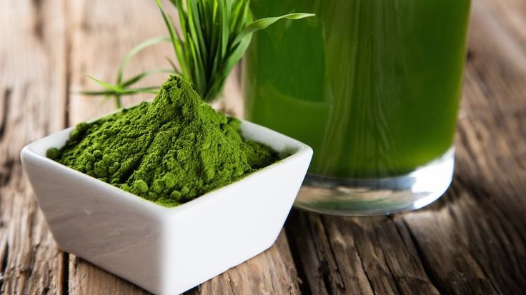 spirulina plant based protein guide