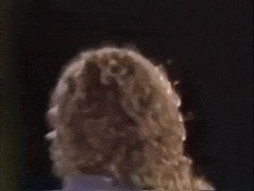 Robert Plant and that hair