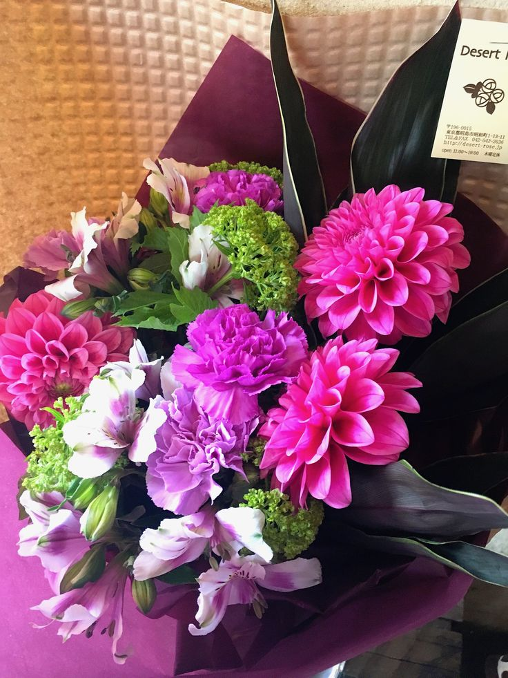 【母の日に贈る紫カーネーション「ムーンダスト」とダリアの花束】