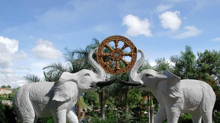 Fakta Menarik - Inilah Cerita di Balik Sebutan Negeri Gajah Putih untuk Thailand