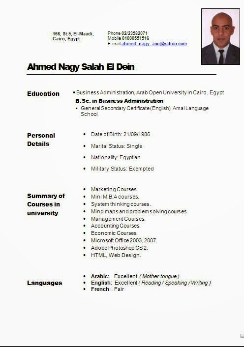 curriculum vitae italiano sample template example