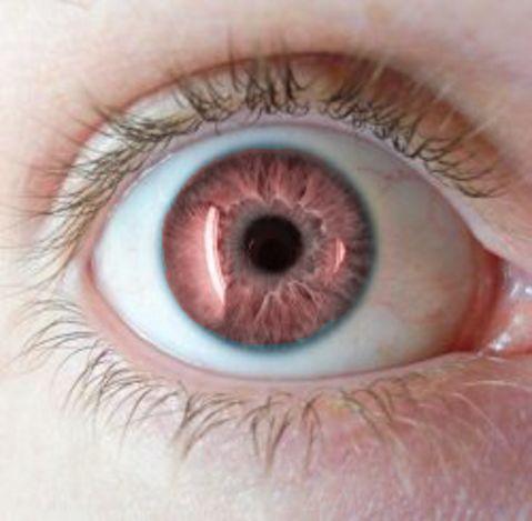 70 curiosidades sobre los ojos - Parte 4 www.oculaserperu.com