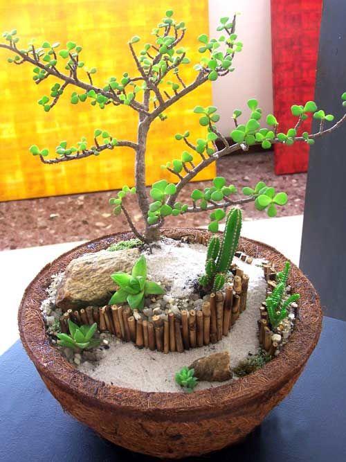 #Minijardins #ArranjosFlorais #Arranjos #FibradeCoco #CocoVerde #Paisagismo #Artefatos #Decoração #Jardinagem #RiodeJaneiro #CocoVerdeReciclado #Reciclagem