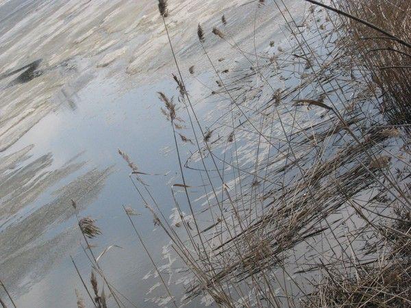 4 SEASONS/SPRING/ICE/SNOW 2010 by Heli Aarniranta on ARTwanted