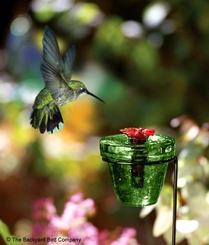 Flower pot humming bird feeders - how cute would these be tucked into container gardens or hanging baskets? Another one from Par-a-Sol.