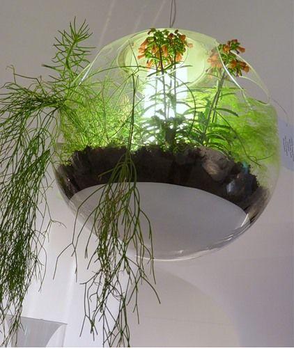 Удивительная растительная люстра от Vegetal Atmosphere