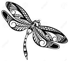 Image result for dragonfly