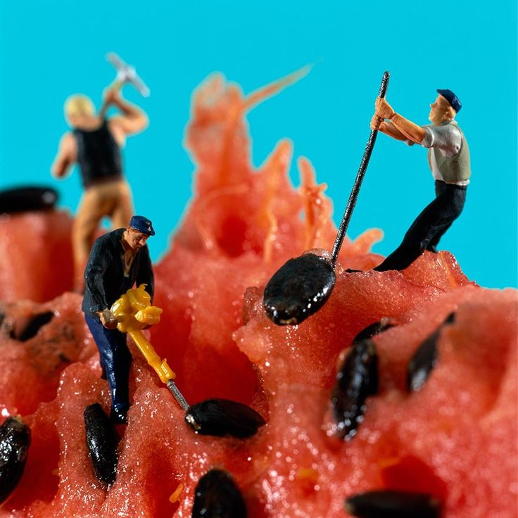 Minimiam: Tiny People's Adventures In The World of Food. i think this is kinda cool haha