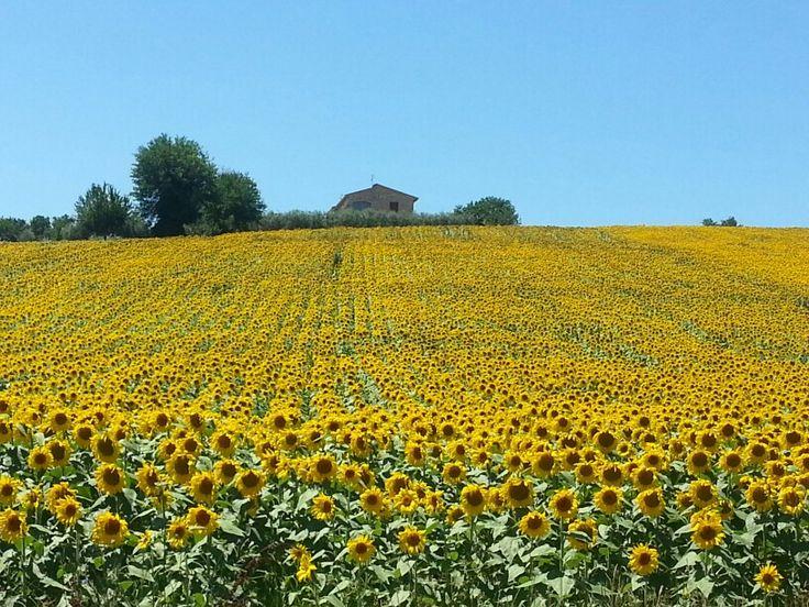#Umbria #Italy