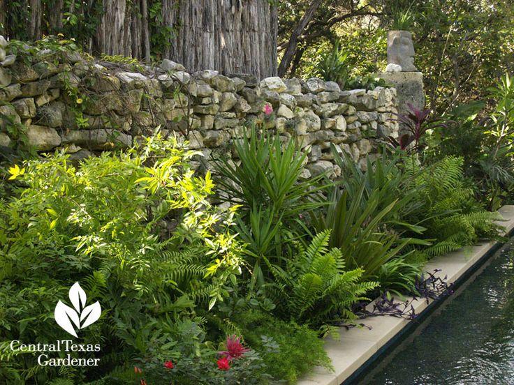 81 best Central Texas Gardener images by Dawn DeSelms on Pinterest ...
