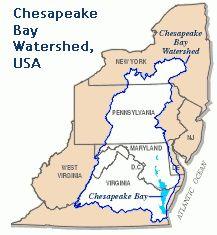 Best Watershed Education Chesapeake Bay Images On Pinterest - Us map chesapeake bay