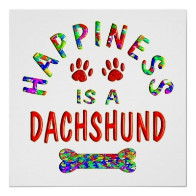 Dachshund Happiness