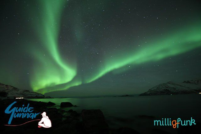 We took two different excursions to view the incredible Northern Lights in Tromso, Norway. Here's what we liked (and didn't) about each tour.