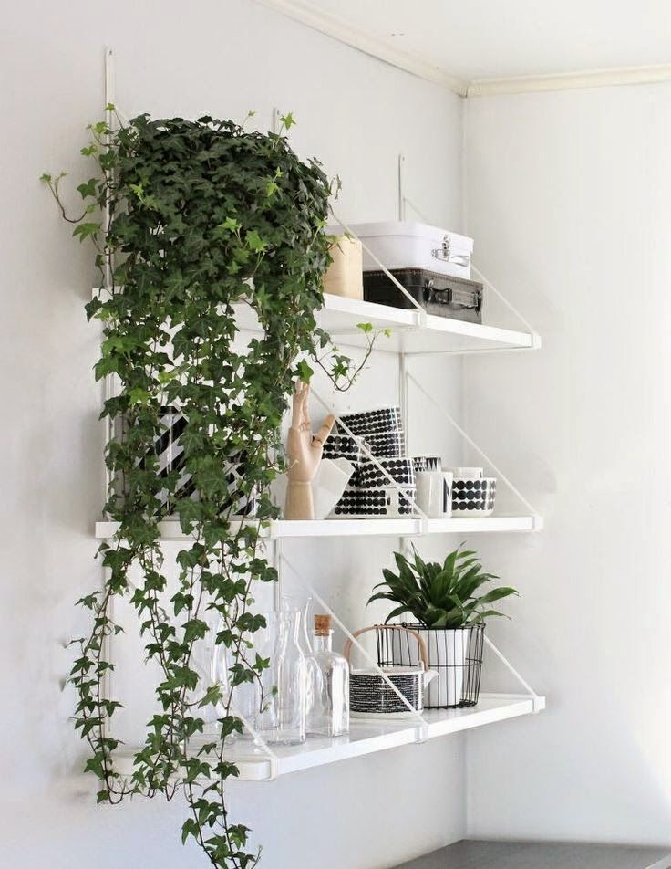 MintSix blog: shelves