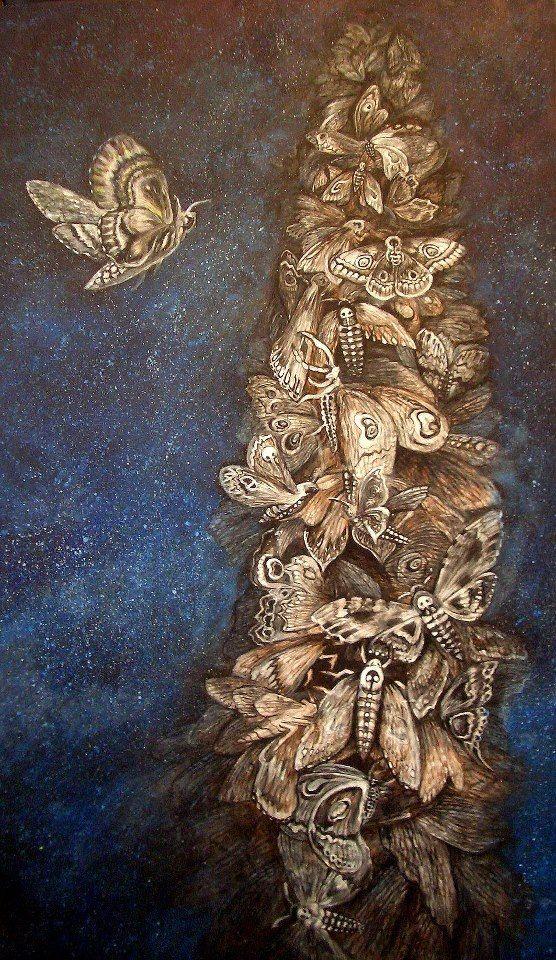 Olivie Brabcová: Moths.