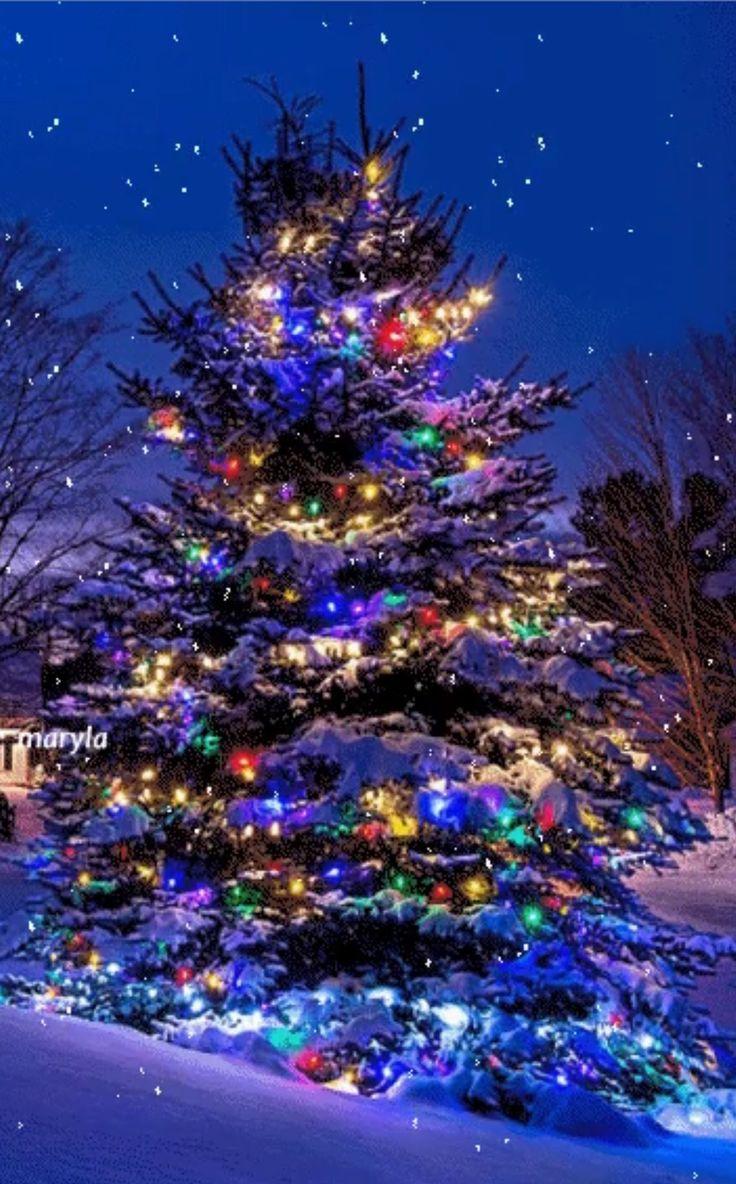 Открытки, елка новогодняя гифы