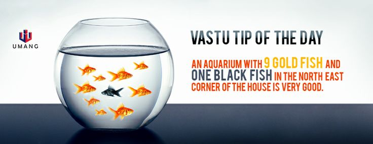#Vastu #Living #Housing #Apartments
