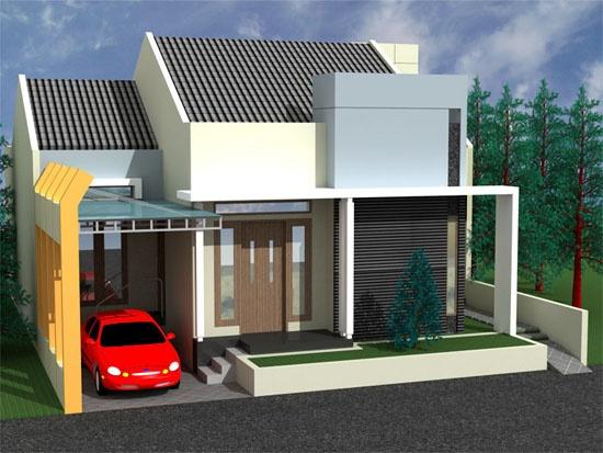 Minimalist-Modern-Home-Design-With-Narrow-Garage-Area.jpg (550×413)
