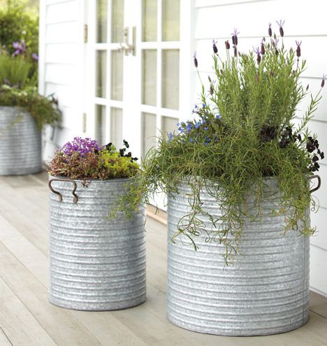 For the back patio but with lemon grass to keep away the mosquitos!