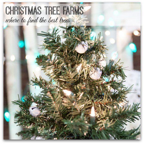 17 best Christmas in Greenville, SC images on Pinterest ...
