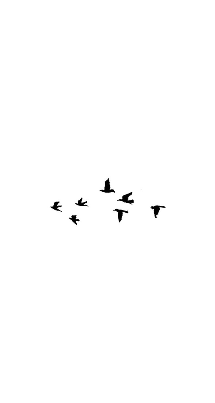 Birds / Find more #Minimalistic #iPhone + #Android #Wallpapers and #Backgrounds at @prettywallpaper