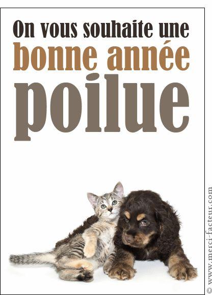 Carte Une bonne année poilue pour envoyer par La Poste, sur Merci-Facteur !