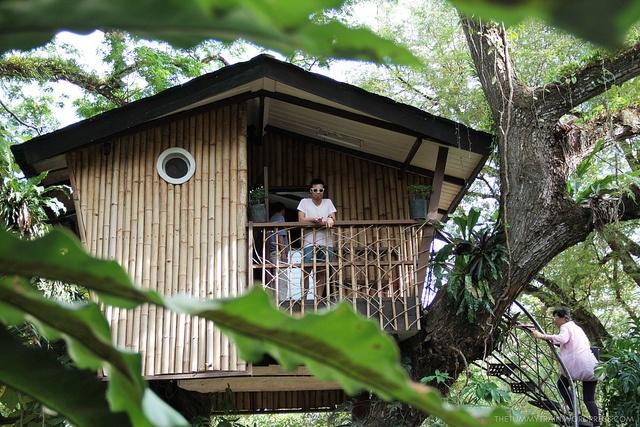 The famous treehouse at Asia's Latin City-- #Zamboanga, #Philippines! #travel #Asia