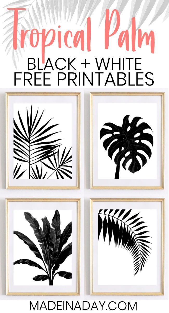 Black White Tropical Palm Leaf Printables Bathroom Wall Art Wall Art Leaf White Wallart Leaf Wall Art Printable Wall Art Tropical Wall Art