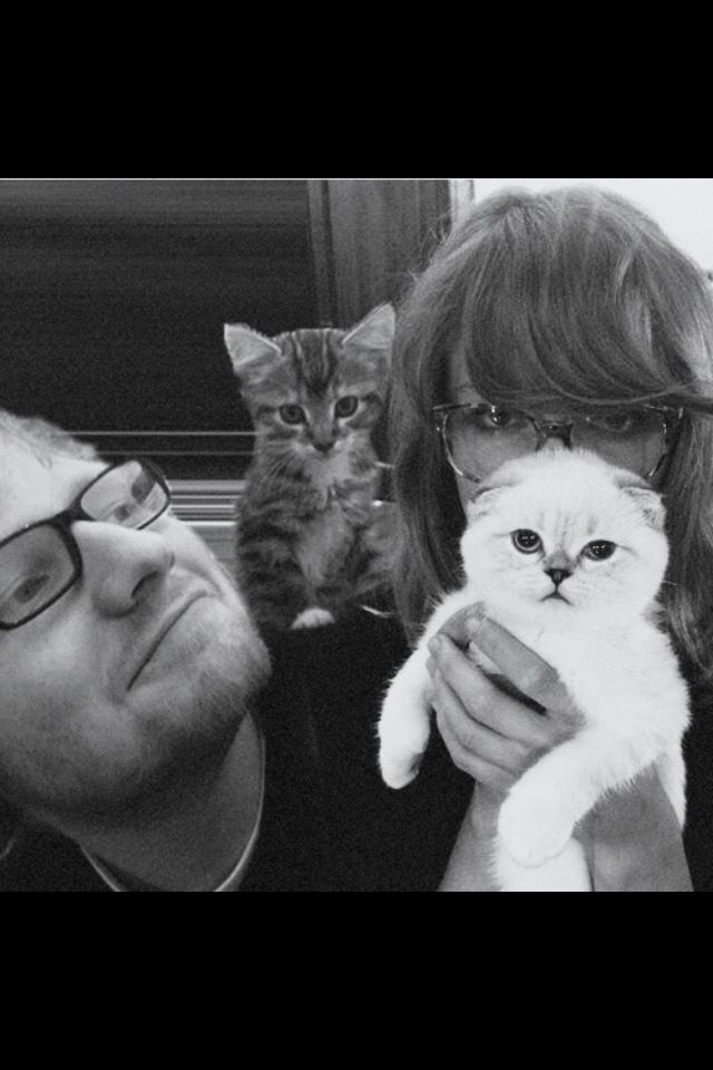 Taylor swift ed sheeran Olivia benson Meredith grey kitties cats