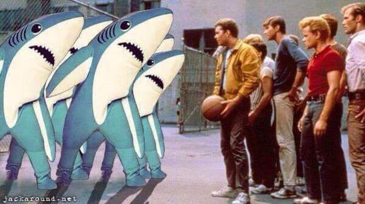 Sharks vs. Jets. West Side Story.
