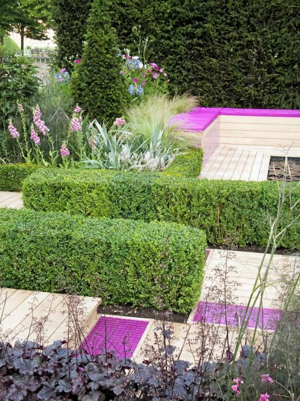 436 best images about trees shrubs on pinterest trees for Garden design ideas for different levels