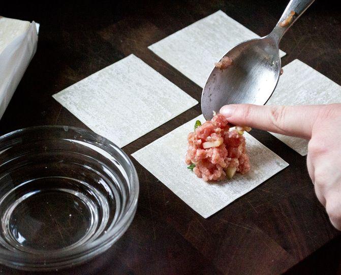 Ravioles à la chinoise/pork dumplings - Camille Brunelle