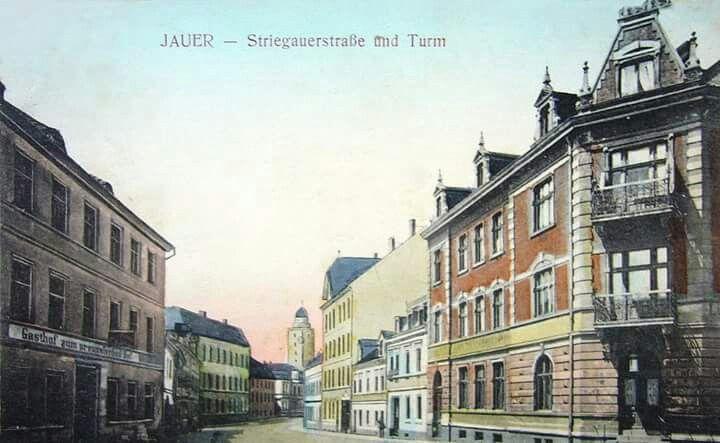 Rok jawor 1911