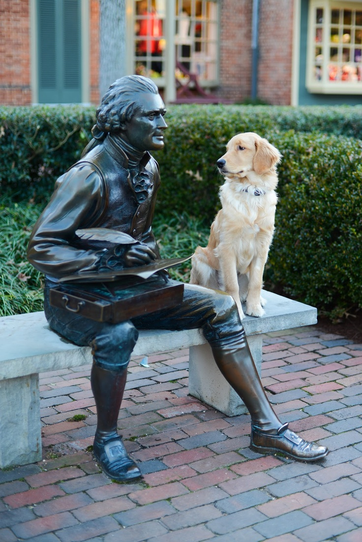 Golden Retiever puppy hanging with Thomas Jefferson in Williamsburg, The College of William and Mary   Samantha Brooke Photography