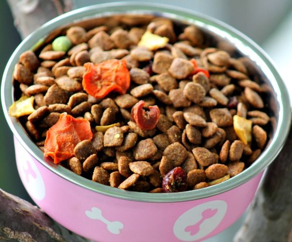 Dog Food With Pieces Of Dried Fruits And Vegetables In