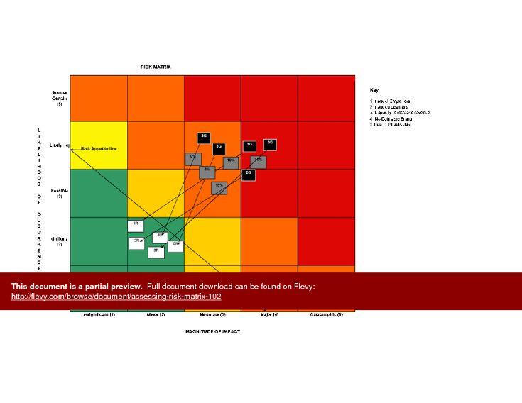 Best  Risk Matrix Ideas On   Risk Management