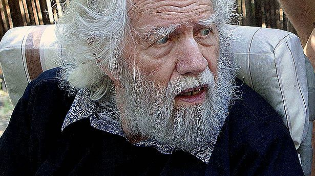 How did Alexander Shulgin become known as the godfather of ecstasy?