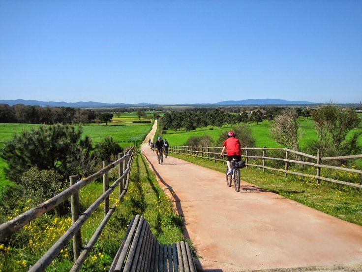 Via Verda del Carrilet II: Girona - Sant Feliu de Guixols Trekking, Barcelona, Country Roads, Travel, Outdoor, Paths, Santiago, Elopements, Places To Visit