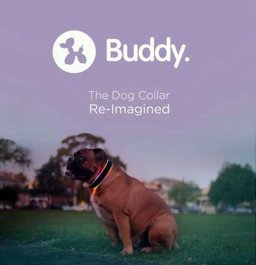 犬向けのヘルスケア用スマート首輪「Buddy」が登場した。活動量計に加え、事故防止や迷子防止の機能も搭載している。 「NEST」などのホームオートメーションシステムと連携し、犬の体温に応じてエアコンを調整する機能や、玄関の犬用ドアのロックを自動的に解除する機能なども搭載する。